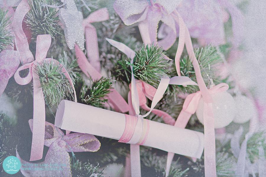 рождественская сказка фотосессия балерина