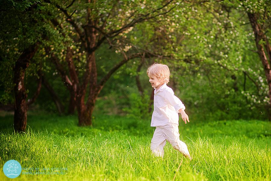 детская фотосессия в цветущем яблоневом саду